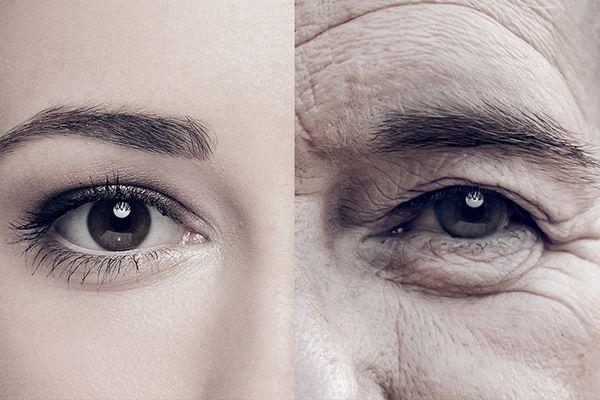 Bild zum Beitrag: Neugierde kennt keine Altersgrenze